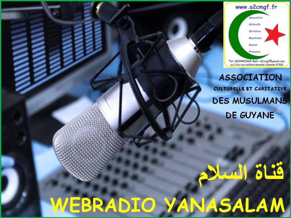 Actuellement sur la plateforme radio garden